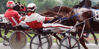 Live Harness Racing
