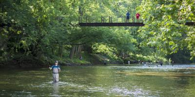 Fly Fishing in Patapsco Valley State Park