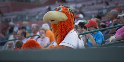 Sherman in the Stands at Shorebirds Game