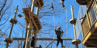 It's ok for the kids to swing from the trees here at Terrapin!